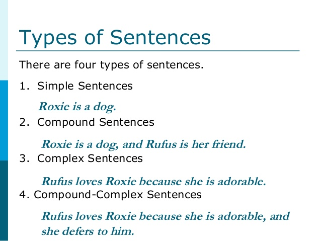 types of sentencing Types of sentences resources there's not just one kind of sentence out there -- oh, no the four most common types of sentences are declarative, exclamatory, imperative, and interrogative, and.